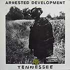 ARRESTED DEVELOPMENT : TENNESSEE