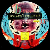 B-TRIBE : YOU WON'T SEE ME CRY