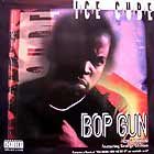 ICE CUBE  ft. GEORGE CLINTON : BOP GUN (ONE NATION)