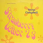 TEVIN CAMPBELL : STRAWBERRY LETTER 23